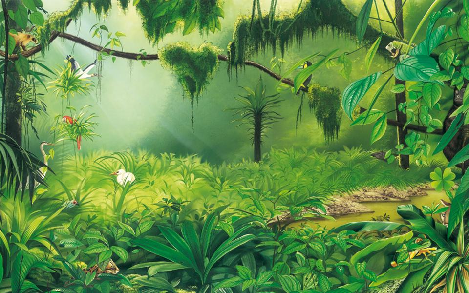 http://Rainforest%20animals%20illustration
