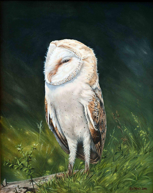 Barn-Owl-White-ghost
